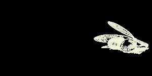 DaMichele-Icon