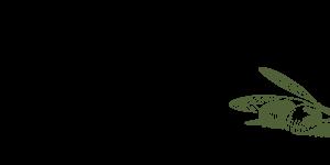 DaMichele-Icon Grün