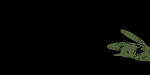DaMichele-Icon - Grün